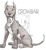 Crowbar the Pit Bull--ADOPTED by MartoonsZoo