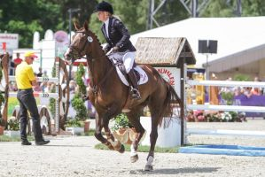 3DE Show Jumping Phase Stock 147 - Upward Canter by LuDa-Stock