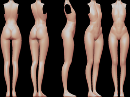 Female body (wip) by SFalkon
