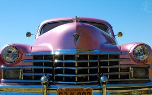 Purple caddy! by ShannonCPhotography