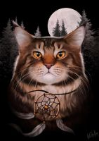 Maine Coon Ajaks by IntoTheBear