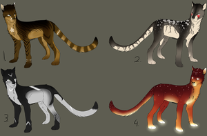 Cat adopts by BlackLightning95