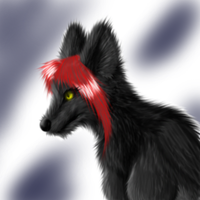 fluffy wolfy by arcticfoxie