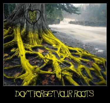 Don't Forget Your Roots - YD by rainydays2006