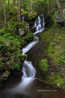Small Fall, Tremont GSMNP by TRBPhotographyLLC
