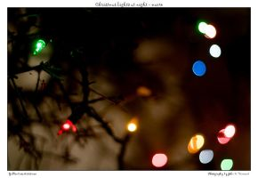 Christmas lights at night - m by yellowcaseartist