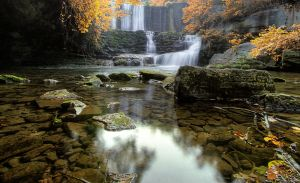 Blanch-psuedo Fall-hdr by joelht74