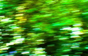 Green Motion by PamplemousseCeil