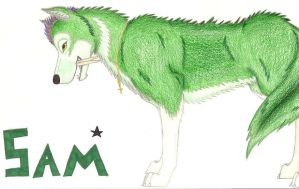 Sam Wolf by FalconFlute