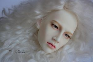 Ludwig FaceUp Details_1 by Ariel-Sun