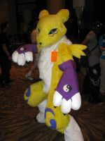 Renamon strikes a pose by Rennon-the-Shaved