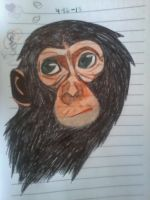 monkey by Chyliethecrazy1