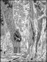 Ancient Grove: Plate 4 by giadrosich
