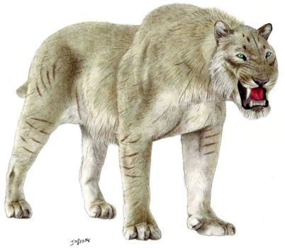 Giant Scimitar-toothed cat by Jagroar