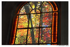 autumnal stained glass by bracketting94