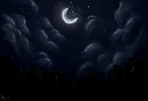 Night Sky by swordofevilbane