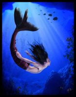 The Deep Blue by chasing-butterflies