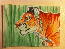 Seperate aceo commission by nightspiritwing