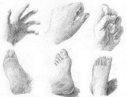 Hands and Feet by arvalis