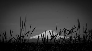 Majestic Mt. Adams BnW by ladyred200141