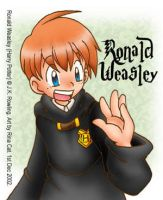 HP: Ron Weasley by rinacat