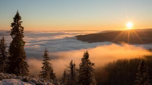 The fog setting over Oslo by Julie-Gunstensen