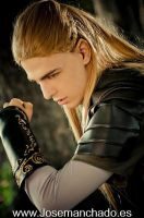Legolas Greenleaf by Zihark-cosplay
