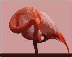 Flamingo in Pink by ip