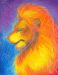 Lion of Judah by christians
