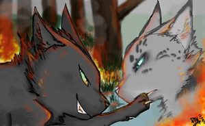 Hollyleaf- Set fire to the ash by Racingstar13