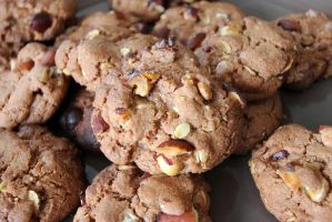 Oilseeds and Chocolate Cookies by Rea-the-squirrel