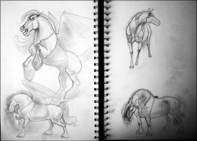Sketchbook: Horses by newfka