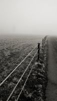 the fence into nothing by michaelwalker