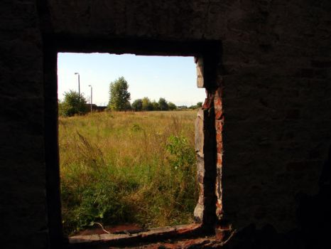 view from window by levynda
