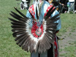 Eagle Feather Bustle by mmad-sscientist