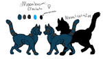 Moonbeam Ref by wolftales1