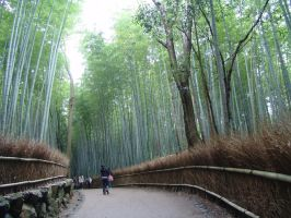 Bambu Road by gotenkun