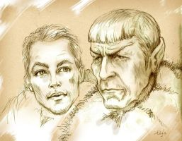 Kirk and Spock by tafafa