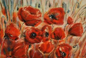 Poppies by ErynLuin