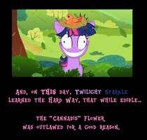 Crazy Twilight Demotivational by MetroXLR99