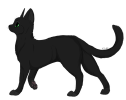 Hollyleaf by KZcat