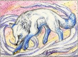 ACEO - Blizzard's Eye by ShadeofShinon