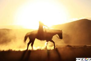 Horse at Dusk by OrtonPhoography12