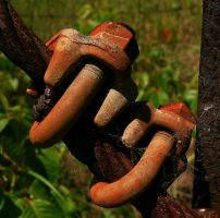 Rusted Bolts by Ranefea
