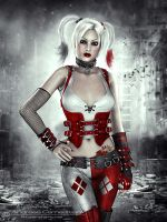 Arkham City Harley Quinn by FrozenStarRo