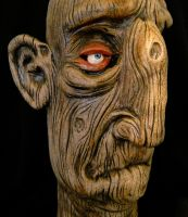 The Wooden Man Jug-Detail by thebigduluth