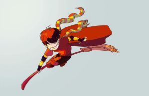 Quidditch Harry animated Gif by Bil0vd