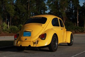 Florida Beetle by KyleAndTheClassics