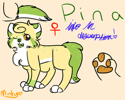 Pina Reference Sheet by MintIeafs