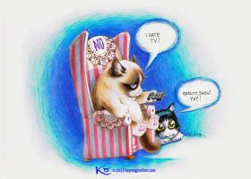 Grumpy Cat hates TV 2013 by Keymagination